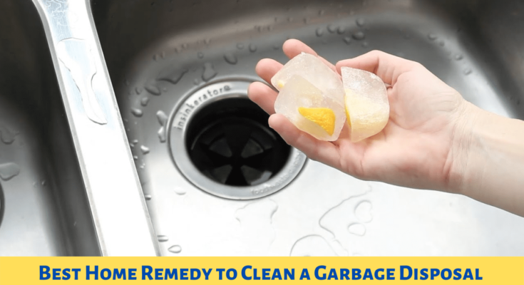 Home Remedy to Clean Garbage Disposal