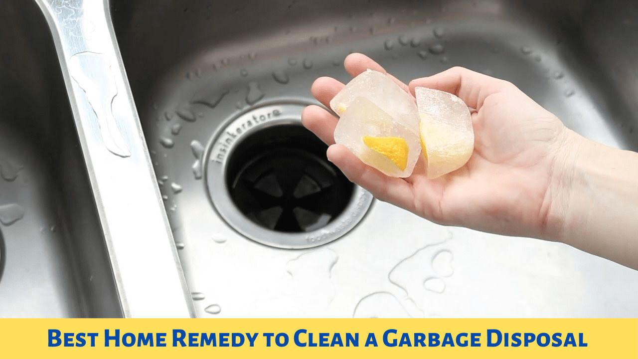 Best Home Remedy to Clean Garbage Disposal